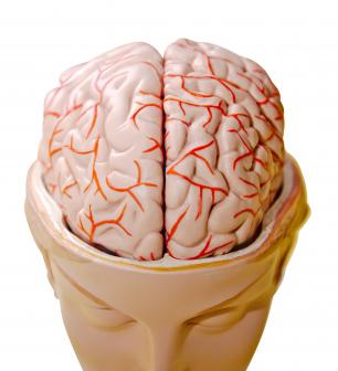Hypnosis study unlocks secrets of unexplained paralysis